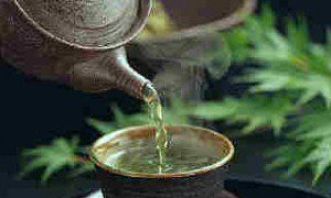 Green tea is encourage during preconception care